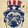 Dog Propaganda
