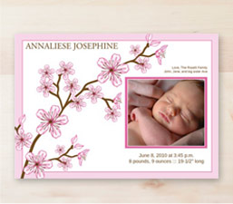 Baby Girl Birth Announcements