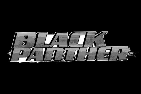Marvel's Black Panther Movie Men's Clothing